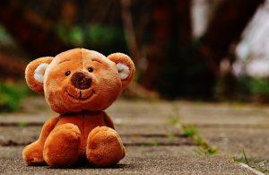 bear-1272762_1920